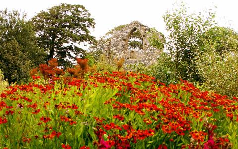 priory-maze-gardens